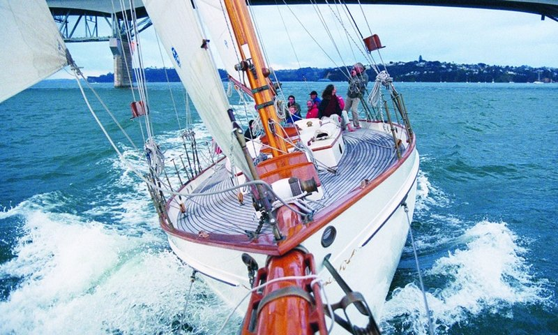 Auckland Sailing Charters.jpg