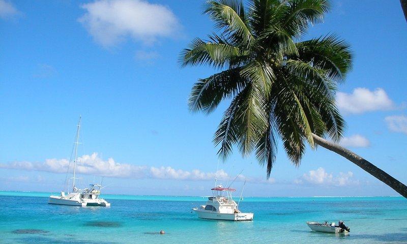 Key West Boat Rentals.jpg