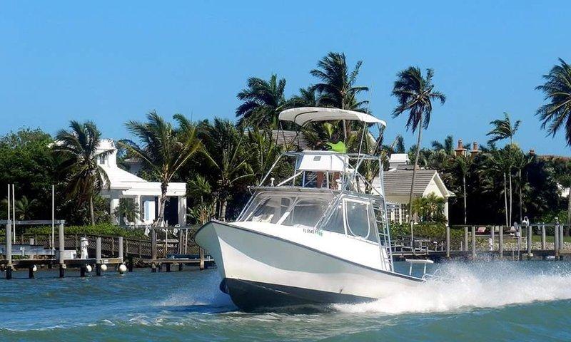 Naples Boat Rentals.jpg