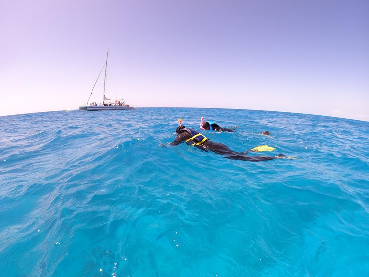 Snorkel (1).jpeg