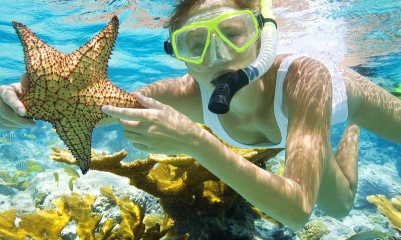 Snorkel Key WEst.jpg