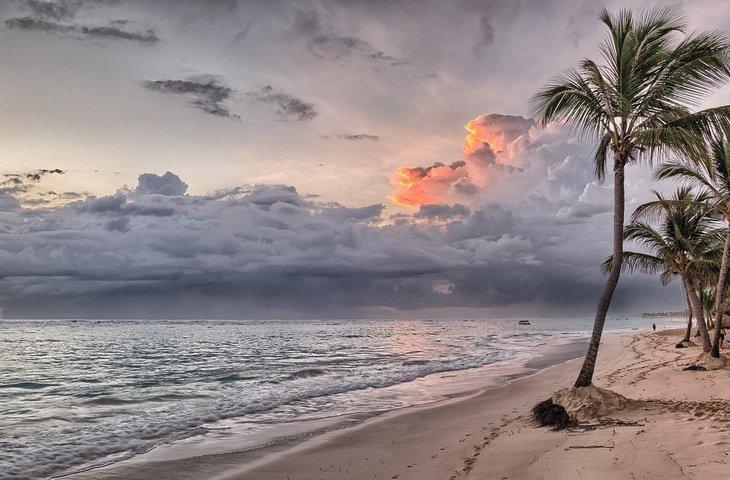 beach-1236581_1280.jpg