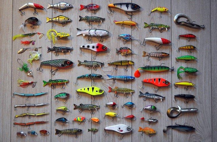 fishing-2669219_1280.jpg