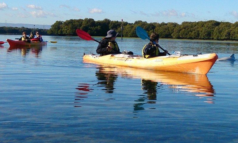 kayak rental adelaide.jpg